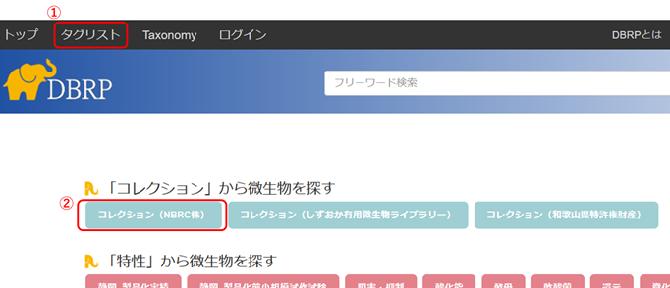 DBRP検索画面の図